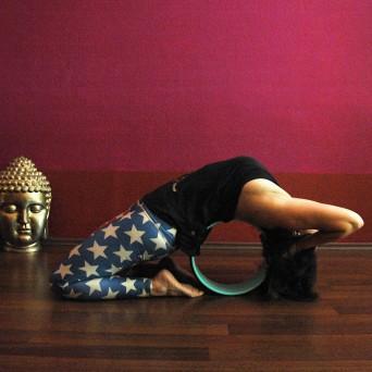 Explore the Yoga Wheel – Neu im YogaMia!