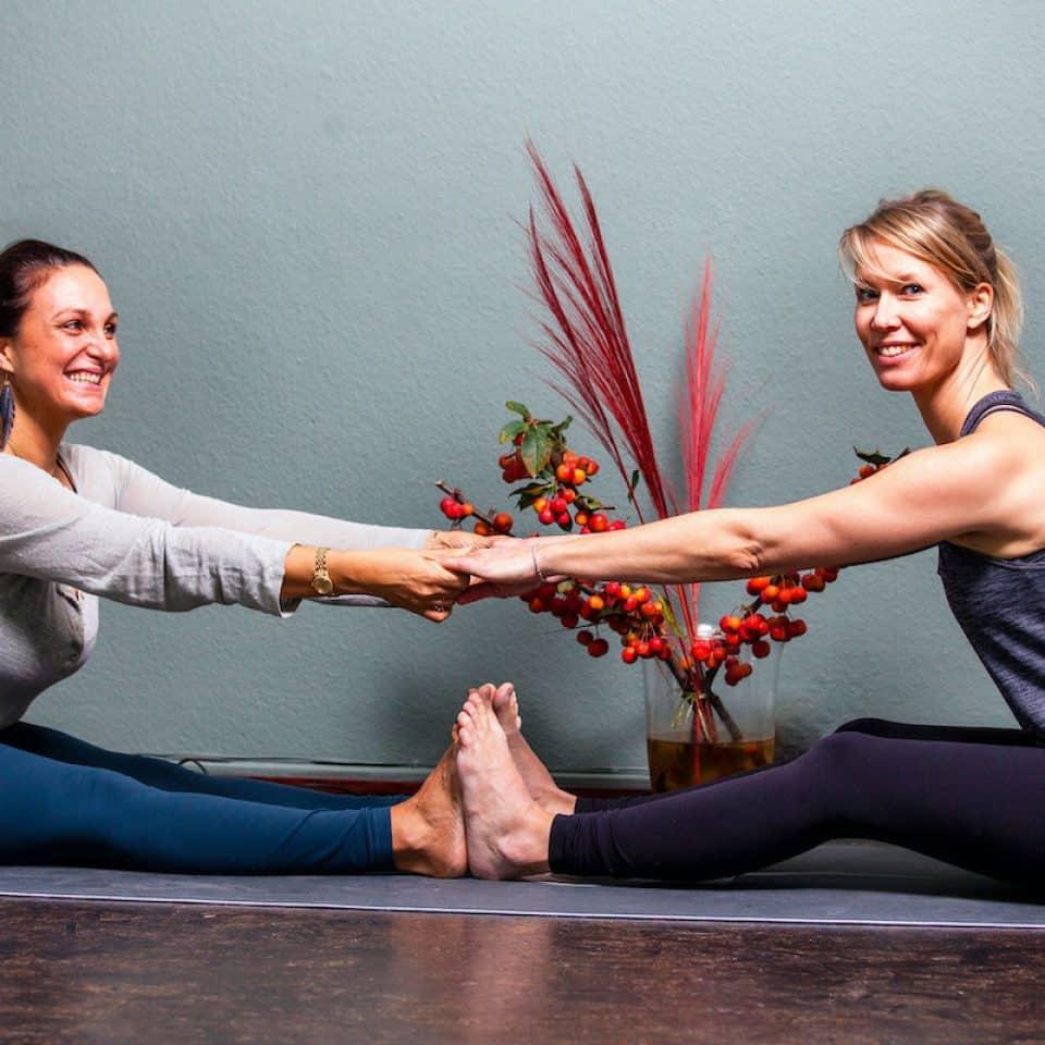 Yogalehrer Ausbildungen 100h 200h 300h